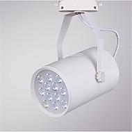 12w 1200lm 3000K / 4000K / 6000K geleid spoor plafond spot light lamp (AC220-240V)