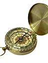 Стильный, нежный компас