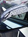 Retroviseur 2X voiture eau de pluie sourcils couverture Lateral