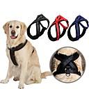 hesapli Fırın Araçları ve Gereçleri-Köpek Koşum Takımı Ayarlanabilir / İçeri Çekilebilir Solid Naylon Siyah Kırmzı Mavi
