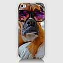 Buy Fashion Dog Pattern Phone Case Back Cover iPhone5C