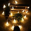 preiswerte RGB Regler-2 M Leuchtgirlanden 20 LEDs 2M Lichterkette Warmes Weiß 1set