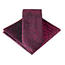 ieftine Cravate-Bărbați Imprimeu / Imprimeu Paisley Petrecere / Birou / De Bază Eșarfă Cravată