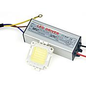 alta potencia chip de lámpara llevada mazorca con IP67 110v 30w conductor - 240v para el bricolaje proyector reflector blanco caliente /