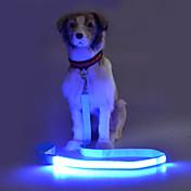 Hund Hundebånd Blinke / Verneutstyr Ensfarget Terylene Grønn / Blå / Rosa