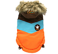 Dog Coat / Hoodie Orange / Pink Dog Clothes Winter Color Block Sports / Keep Warm