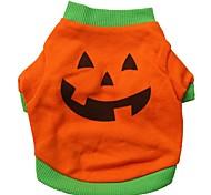 Katzen / Hunde Kostüme / T-shirt / Austattungen Orange Hundekleidung Sommer Karton Cosplay / Halloween