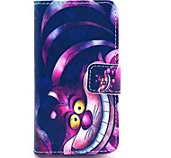 preiswerte -coco Fun® violetten Karton Katzemuster PU-Leder Ganzkörper-Fall mit Screen Protector für iPhone 4 / 4S