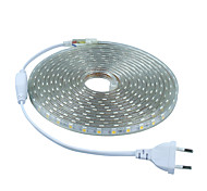 5m AC220V SMD 5050 light+Power plug,white/warm white/green/blue/red,60leds/m 300led waterproof  led Strips