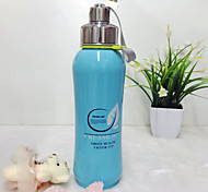 Water Bottle Single Stainless Steel for