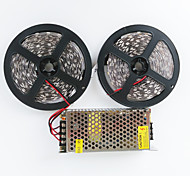 Z®ZDM 2X5M 140W 600X5050 SMD LED Cold White/Warm White  AC110-240V To DC12V10A Transformer