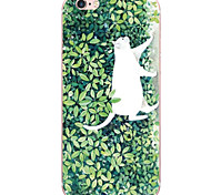 Pattern Cute Cat PC Hard Case Back Cover For iPhone 6s Plus 6 Plus iPhone 6s 6 iPhone SE 5s 5