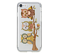 IPhone 7 7Plus  Transparent Pattern Case Back Cover Case Three Cute Owls Soft TPU for iPhone 6s 6 Plus iPhone 6s 6 iPhone 5s 5 5E 5C