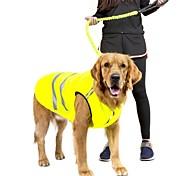 Недорогие -Собака Толстовка Жилет Одежда для собак На каждый день Сохраняет тепло Новый год Однотонный Оранжевый Зеленый Костюм Для домашних животных