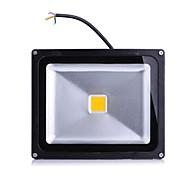LED 투광 조명 1 LED가 고성능 LED 따뜻한 화이트 차가운 화이트 2000lm 2800-7000K AC 85-265V