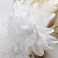 pletiva za kosu vjenčanja / party 2pcs elegantan klasični ženski stil