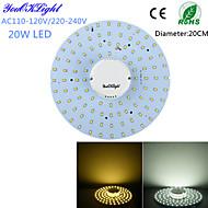 저렴한 -YouOKLight 1800 lm 천장 조명 100 LED가 SMD 2835 장식 따뜻한 화이트 차가운 화이트 AC 110-130V AC 220-240V
