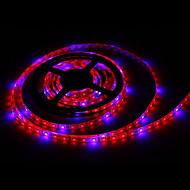 billiga Växthuslampor-zdm 5m 72w 300st 5050 4r1b växtlampa med 12v / 6a eu / au / us / uk ac100-240v ström