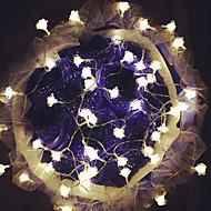100 주도 10m 장미 빛 방수 플러그 야외 휴가 장식 조명 주도 문자열 조명