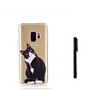 Недорогие Чехлы и кейсы для Galaxy S8-Кейс для Назначение SSamsung Galaxy S9 S9 Plus Полупрозрачный Кейс на заднюю панель Кот Животное Мягкий ТПУ для S9 Plus S9 S8 Plus S8 S7