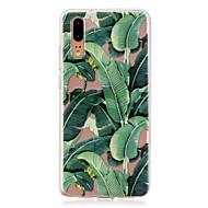 お買い得  携帯電話ケース-ケース 用途 Huawei P20 / P20 lite 半透明 バックカバー 植物 ソフト TPU のために Huawei P20 / Huawei P20 Pro / Huawei P20 lite
