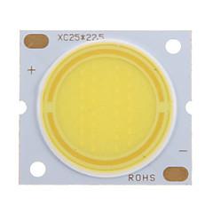 halpa LED:t-15W COB 1350-1450LM 6000-6500K Cool White Light LED-siru (45-50V, 300uA)