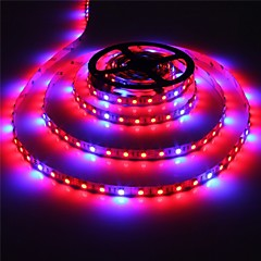 abordables Super venta de LED-ZDM® 1x5M Sets de Luces / Growing Strip Lights 300 LED 5050 SMD 1 Cables de CC / 1 x 12V 3A adaptador Rojo / Azul / Color de fuente de luz dual Auto-Adhesivas 12 V 1 juego / Cañas / CE