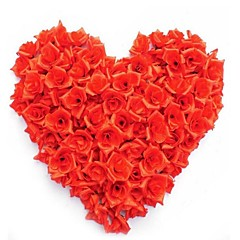 Недорогие Женские украшения-Искусственные Цветы 50 Филиал Модерн Розы Букеты на стол