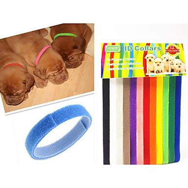 Kat Hond Kraag ID Tags Verstelbaar / Uitschuifbaar Regenboog Nylon Regenboog