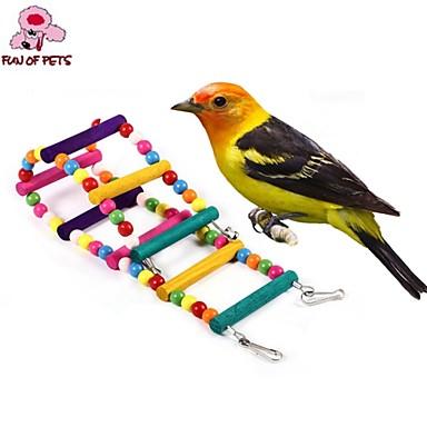 Pássaro Poleiros e Escadas Plástico Madeira Multi Cores