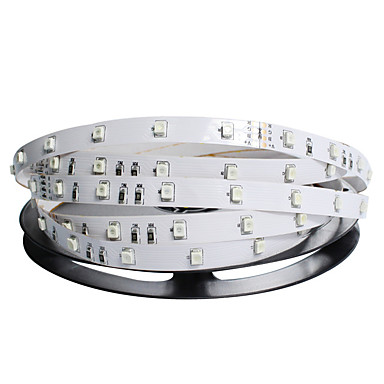 NO 5 M 300 3528 SMD 화이트 / RGB / 레드 / 블루 / 그린 방수 24 W 유연한 LED 조명 스트립 DC 24 V