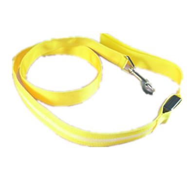 Koira Talutushihnat LED valot Yhtenäinen Nylon Oranssi Keltainen Vihreä Sininen Pinkki