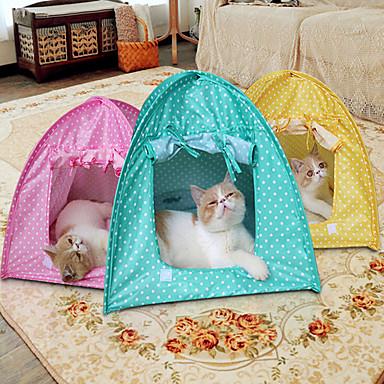 قط كلب خيمة الكاميرا خيمة الكاميرا