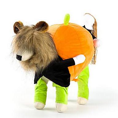 Pies Kostiumy Płaszcze Ubrania dla psów Codzienne W stylu brytyjskim Tęczowy Kostium Dla zwierząt domowych