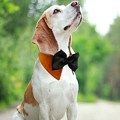 قط كلب ياقة قابل للسحبقابل للتعديل متنفس ببيونة قماش أبيض برتقالي أخضر