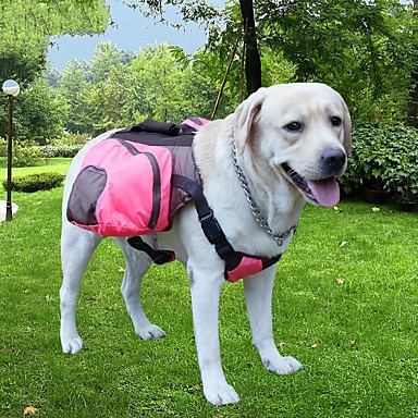 Pisici Câine Portbagaje & rucsacuri de călătorie câine Pack Animale de Companie  Genţi TransportAjustabile/Retractabil Portabil
