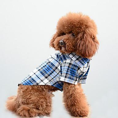 كلب T-skjorte ملابس الكلاب كاجوال/يومي منقوشة / تصفح برتقالي أحمر أزرق كوستيوم للحيوانات الأليفة