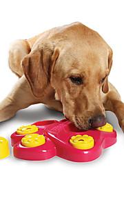 Hund Hundleksak Husdjursleksaker Tuggleksaker Kul För husdjur