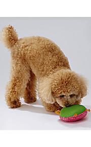 Hund Hundleksak Husdjursleksaker Pipande leksaker gnissla Tyg För husdjur