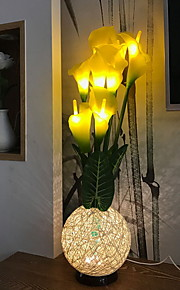 1pc LED Night Light Warm wit DC Powered Aanbiddelijk 5 V