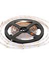 5M 300-LED 3000K Warm White Light LED Strip Light (DC 12V)