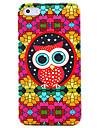 아이폰 4/4S를위한 다채로운 안경 올빼미 패턴 하드 케이스