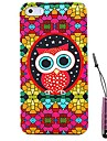 Cute Owl Pattern Hard Case & Touch Pen for iPhone 5/5S