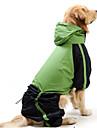 Кошка Собака Дождевик Одежда для собак Контрастных цветов Красный Зеленый Нейлон Костюм Для домашних животных Муж. Жен. Защита от ветра