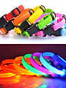 Cat Dog Collar LED Lights Adjustable / Retractable Solid Nylon Red Green Blue Pink Rainbow