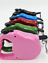 Dog Leash Breathable Safety Solid Silicone Rainbow