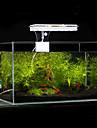 Aquarium Eclairage LED Blanc Bleu Comprend Interrupteur(s) Lampe a LED AC 100-240V