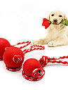 Dog Dog Toy Pet Toys Chew Toys None Rubber For Pets