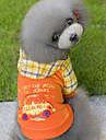 Hunde / Katte Frakker / Sweatshirt Hundetøj Geometrisk Orange / Blå Bomuld Kostume For kæledyr Unisex Afslappet / Hverdag / Opvarmninger