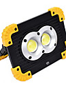 YWXLIGHT® 1pc 20 W LED Floodlight New Design / Cool Cold White 4.5 V Outdoor Lighting 2 LED Beads